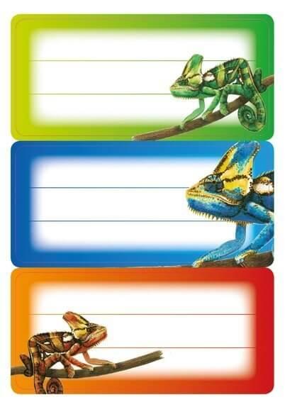 HERMA 5876 10x Schuletiketten Gecko