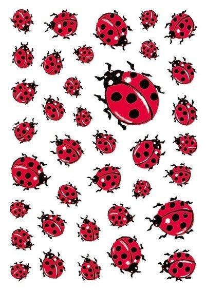 HERMA 5439 10x Sticker DECOR Marienkäfer