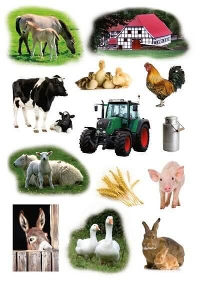 HERMA 3358 10x Sticker DECOR Bauernhoftiere