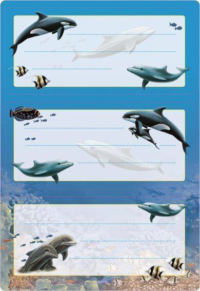 HERMA 5579 10x Schuletiketten Delfine beglimmert
