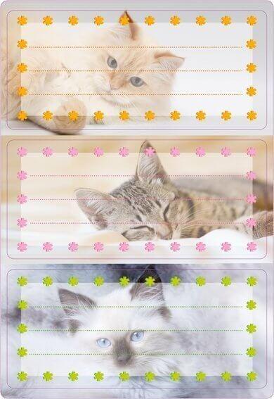 HERMA 5569 10x Schuletiketten Katzen beglimmert