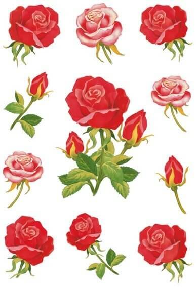 HERMA 3581 10x Sticker DECOR Rosen